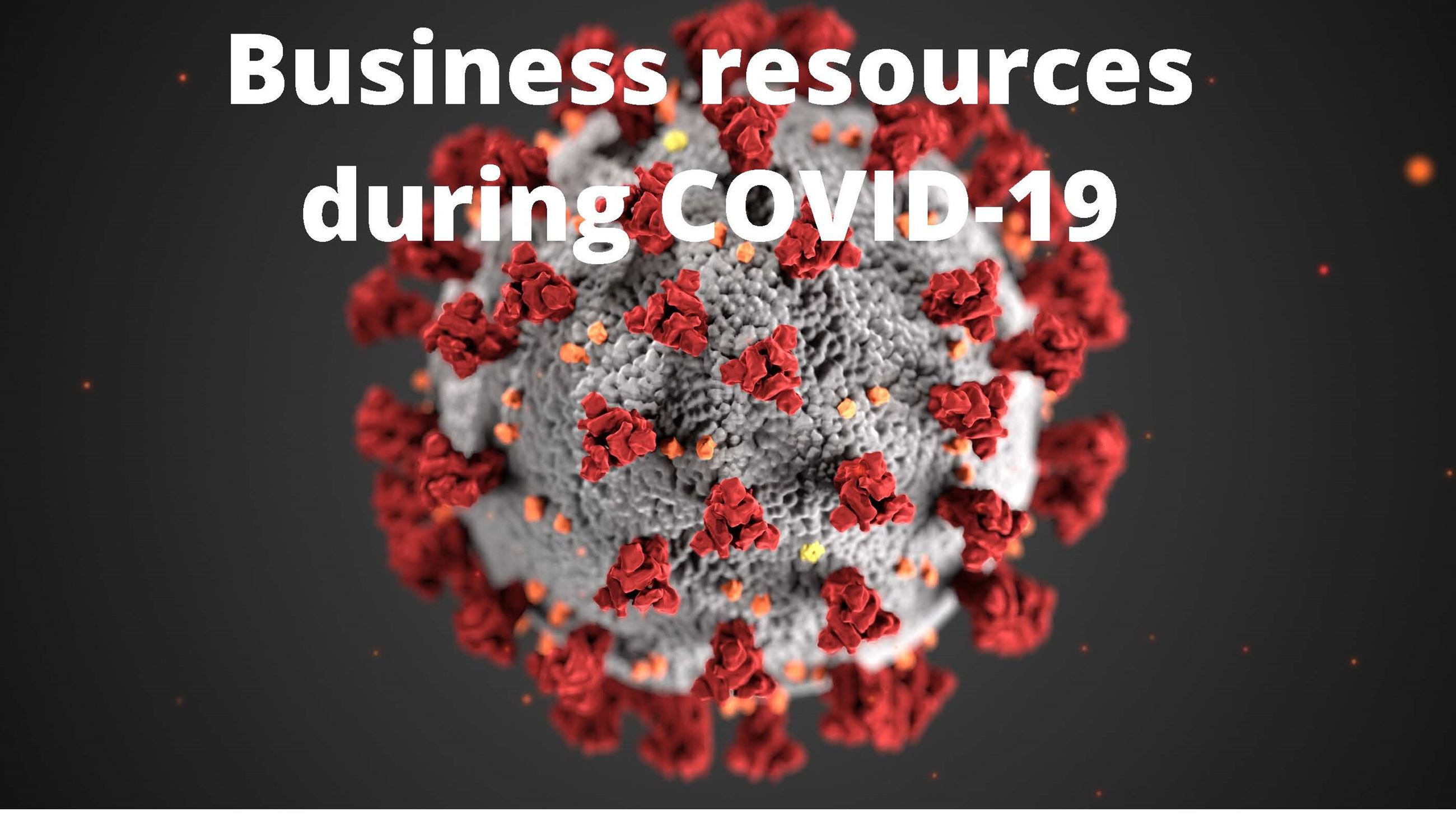 Business resources during COVID-19